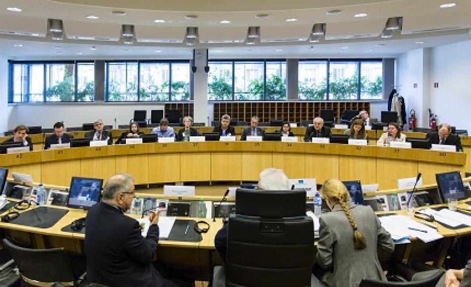 24 February 2016, EU Domestic Advisory Group (DAG) meeting in Brussels