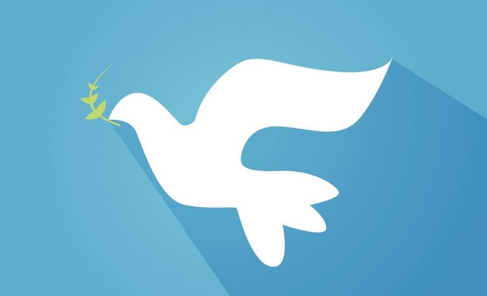 Dove with olive twig ©CanStockPhoto nezezon