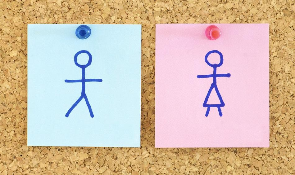 Gender Equality  blue and pink paper in a corkboard ©CanStockPhoto pedrosala