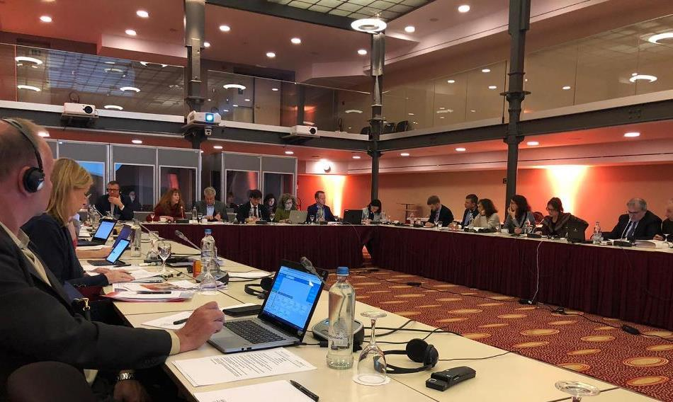 19 November, the  Social Dialogue Committee for central and federal government administration  -SDC CGA- met in Brussels [photo FPCGILInternational]