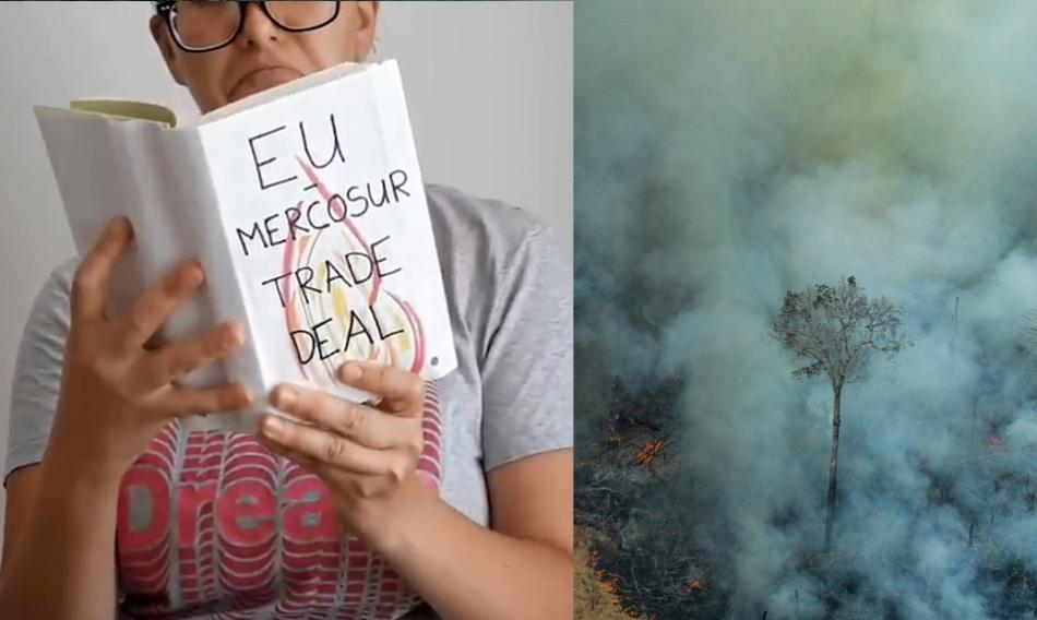 EU MERCOSUR AMAZON BURNING