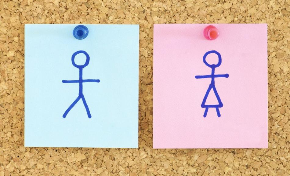 Gender Equality  blue and pink paper in a corkboard ©CanStockPhoto pedrosala